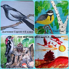 Онлайн конкурс птиц 2.jpg