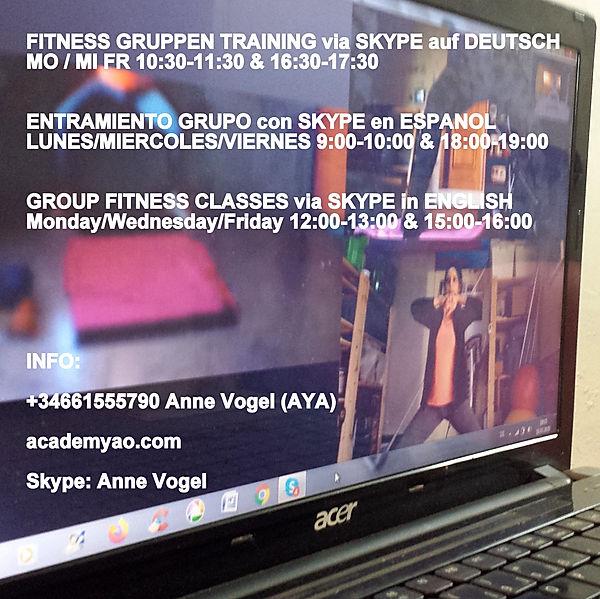 Skype Functional Fitness AaO 18b.jpg