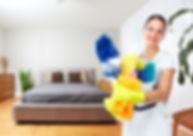 Maid woman with tools. House cleaning se