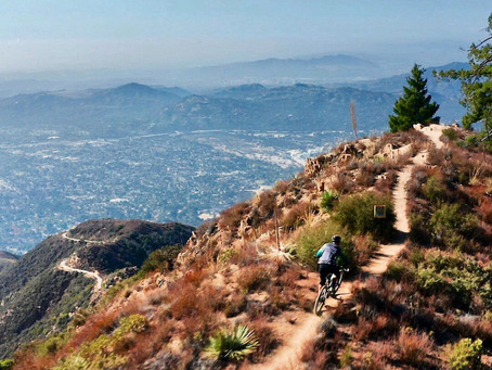 6 Must-Ride Mountain Bike Trails in California