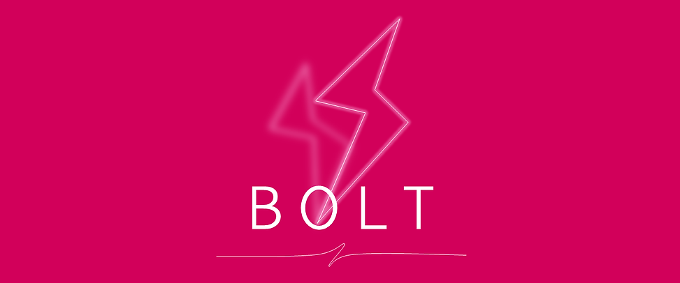 bolt4love logo.png