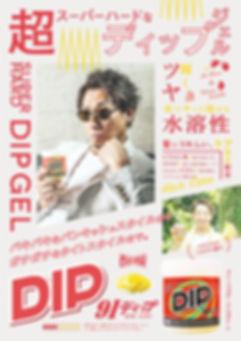 Dip_02.jpg