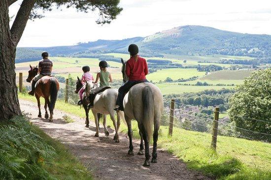 Pony Trekking in Perthshire