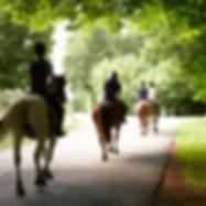 Pony Trekking around Crieff and Auchterarder