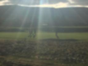 Golfers on Sunny Kings Course Gleneagles