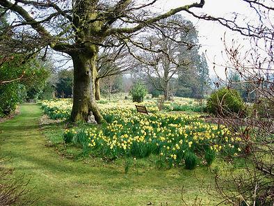 Gardens at Braco Castle