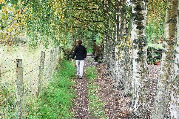Pathway around Provost's Walk Auchterarder