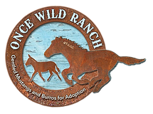 ONCE WILD RANCH LOGO[425].png