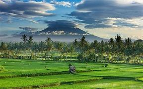 Bali Luxury Retirement Villas Scenes (3)