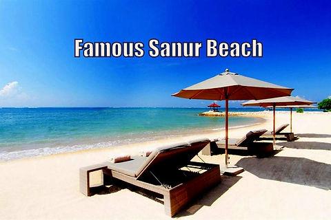 Pt. Bali Luxury Villas Sanur 2020-08 (26