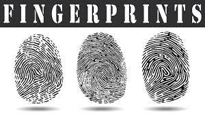 Mandeville Fingerprinting