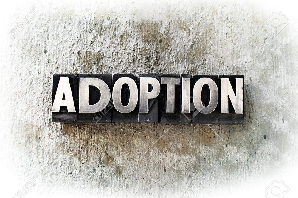 Adult Adoption Process