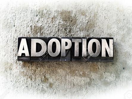 Adult Adoptions