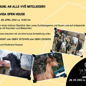 LaMovida OpenHouse