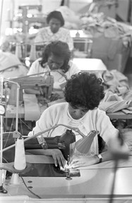 Women sewing on machines at Tuskegee Mills in Macon County, 1967.
