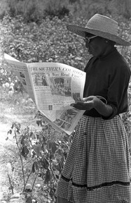"""Woman reading """"The Southern Courier"""" in the cotton field of  Minnie B. Guice near Mount Meigs, 1966."""
