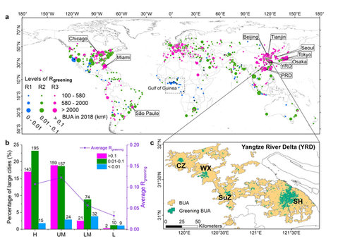 Distribution of large cities in the world with greening built-up area (BUA), and greening built-up areas in Yangtze River Delta (YRD) city cluster