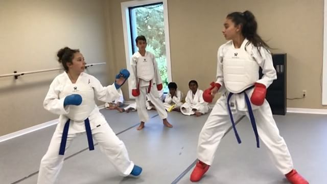 Good job girls _ellie_lugo !! _karate_kurdistan
