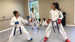 Good job girls _ellie_lugo !! _karate_kurdistan