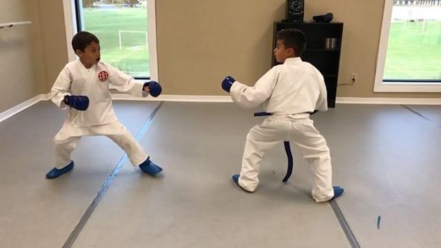 7 years old karatekas!
