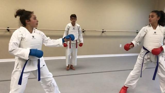 Excellent!! _karate_kurdistan