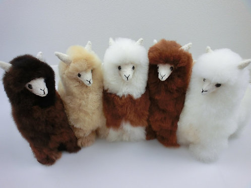 "12"" Real Fluffy Alpacas"