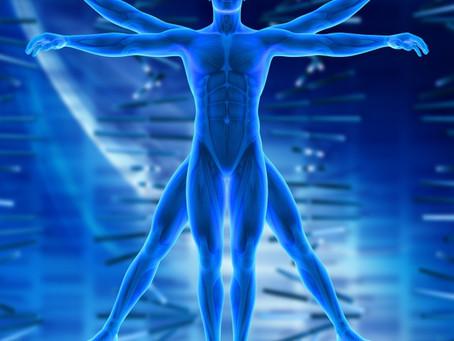 O corpo humano é incrível! Você sabia que...