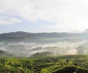 Drive to the Munnar hill ranges.jpg