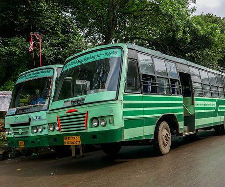 public transport buses.jpg