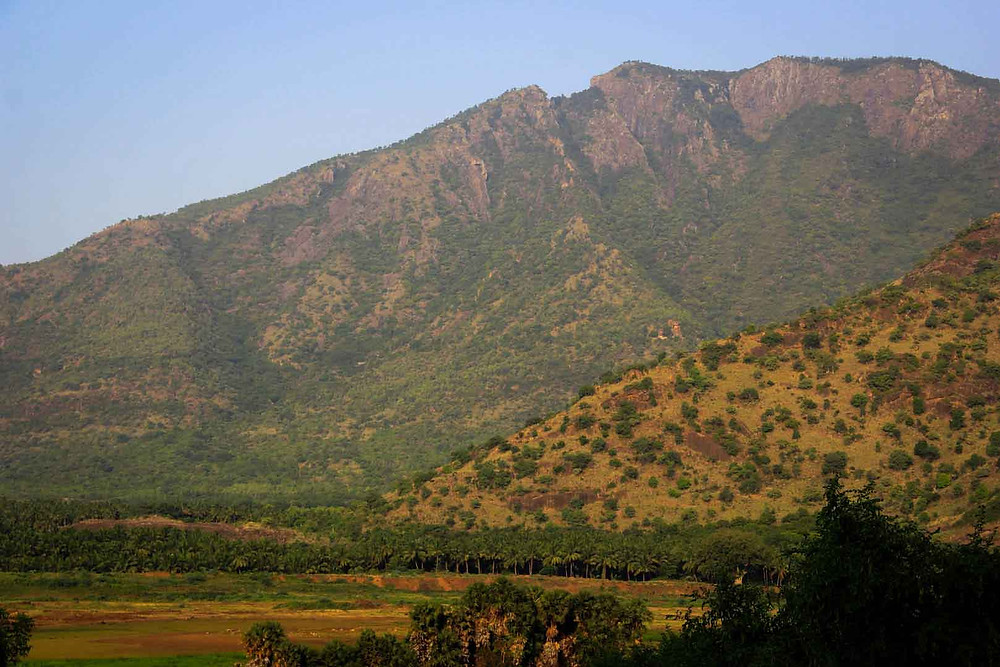 Palani Hills in Tamil Nadu,Green Earth Trails places to visit in Kerala places to visit in south india Kerala tour operator kerala tour operators South India tour operator  Athoor Athoor village tour Tamil village