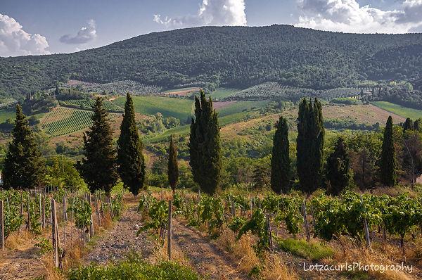 San Gimignano countryside Tuscany Italy
