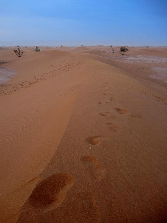 Moroccan desert footsteps