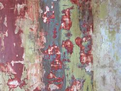 Paint Sample