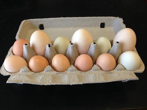 Chicken Eggs, Liberty Tree Farmstead