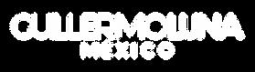 Logo_Guillermo Luna_Mesa de trabajo 1 Ko