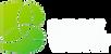 bv logo.png