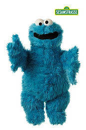 45CM COOKIE MONSTER