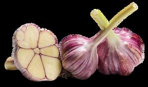 Bohemium Rose 9625.png