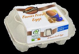 Annalitten-Farm-Fresh-6-Pack.png
