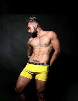 Boxer Amarillo