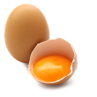 cut-out-egg.png