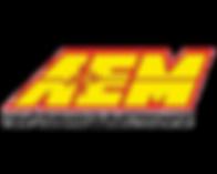 AEM Perfomance Electronics logo