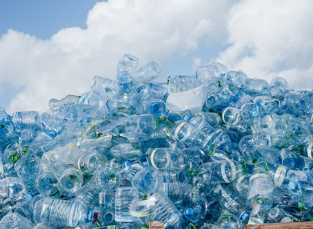 'Every Bottle Back' Initiative Aims to Reduce Plastic Waste in Beverage Industry