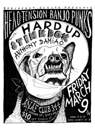 Banjo punks poster