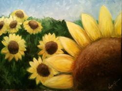 sunflowerfield