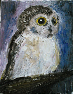 Pete the Owl
