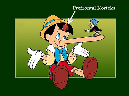 yalan soyleme hastaligi yalanci tedavi neurofeedback psikiyatri