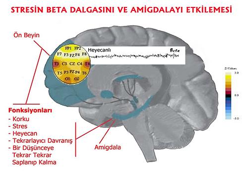 stres, beyin, ilacsiz psikiyatrik tedavi