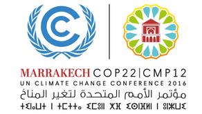 COP 22 Overview