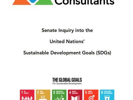 Strategic Sustainability Consultants Submits Recommendations to Senate on United Nations' Global
